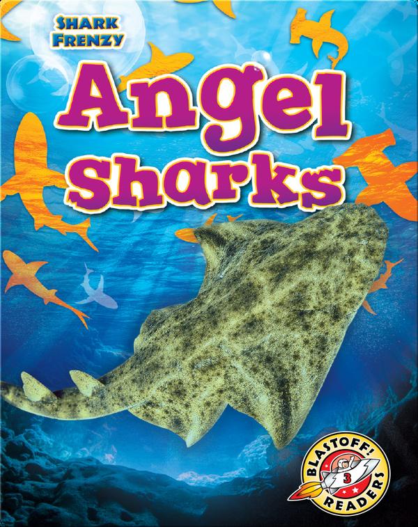 Shark Frenzy: Angel Sharks