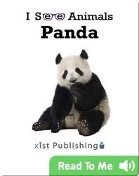 I See Animals: Panda