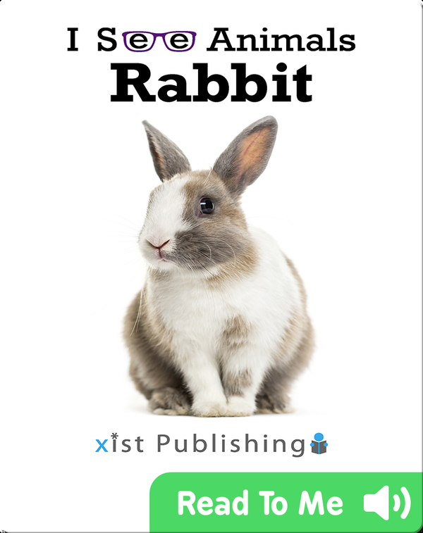 I See Animals: Rabbit