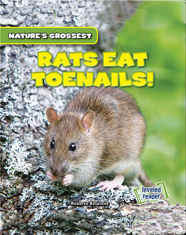 Nature's Grossest: Rats Eat Toenails!