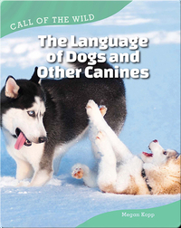 The Language of Dogs and Other Canines