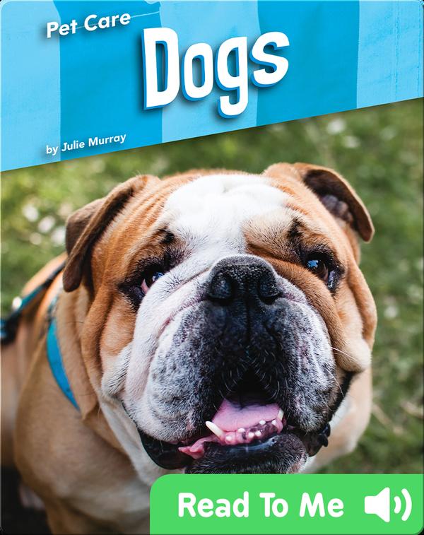 Pet Care: Dogs