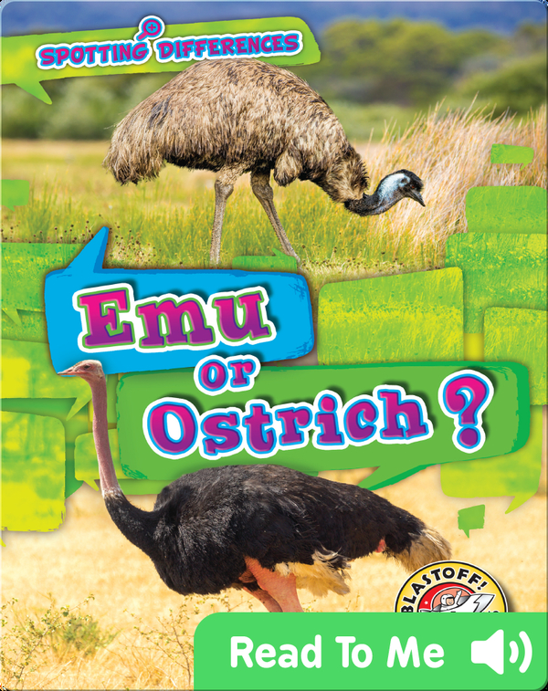 Spotting Differences: Emu or Ostrich?