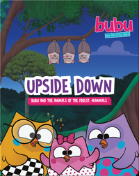 Bubu and the Little Owls: Upside Down