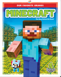Our Favorite Brands: Minecraft