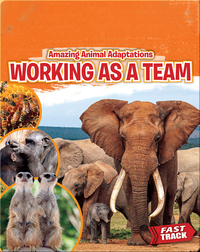 Amazing Animal Adaptations: Working As a Team