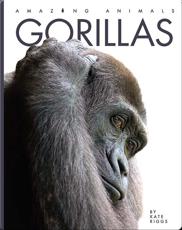 Amazing Animals: Gorillas