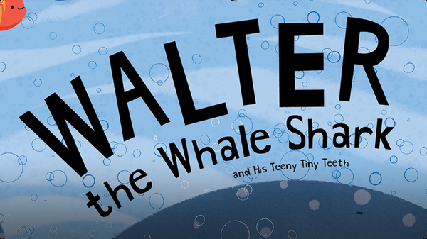 Walter the Whale Shark