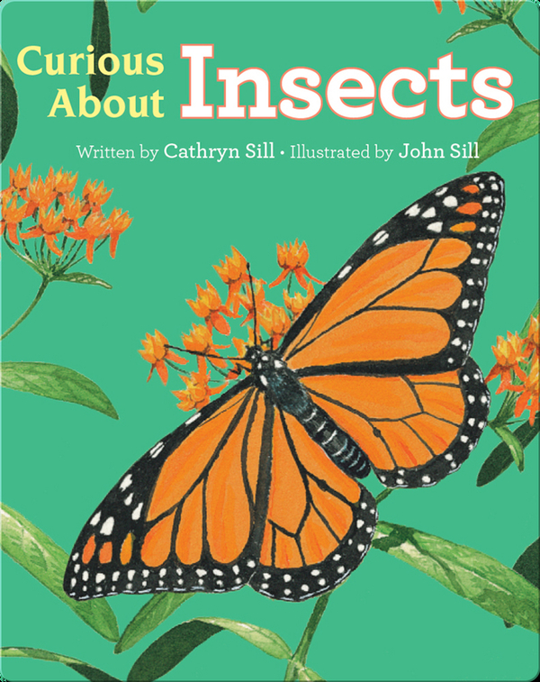 Discovering Nature: Curious About Insects
