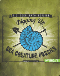 Digging Up Sea Creature Fossils