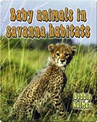 Baby Animals in Savanna Habitats