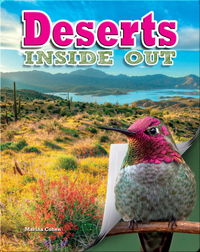 Deserts Inside Out