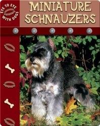 Eye To Eye With Dogs: Miniature Schnauzers