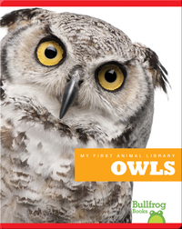 My First Animal Library: Owls