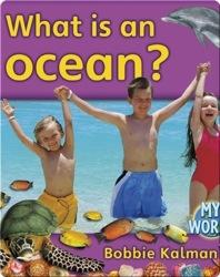 What Is An Ocean?