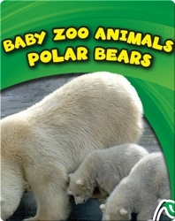 Baby Zoo Animals: Polar Bears