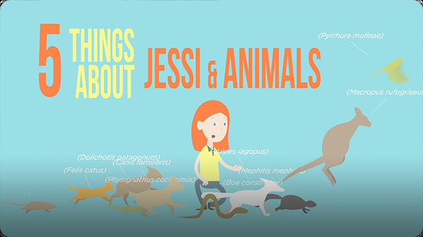 5 Things About Jessi and Animals
