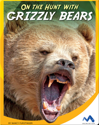 On the Hunt With Grizzly Bears