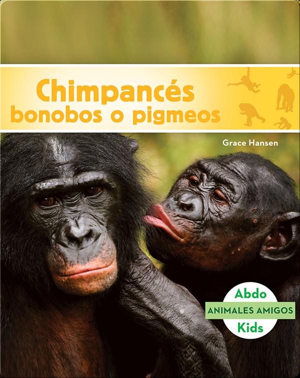 Chimpancés bonobos