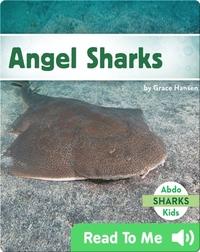 Angel Sharks