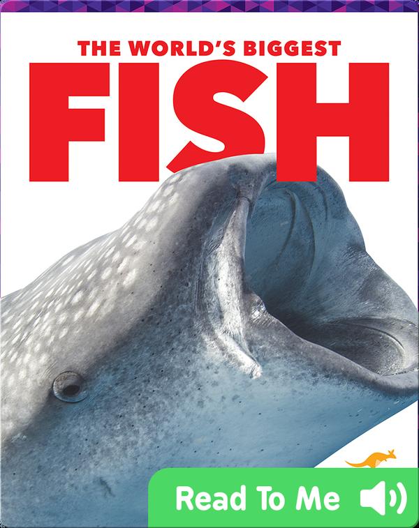 The World's Biggest Fish