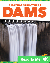 Amazing Structures: Dams
