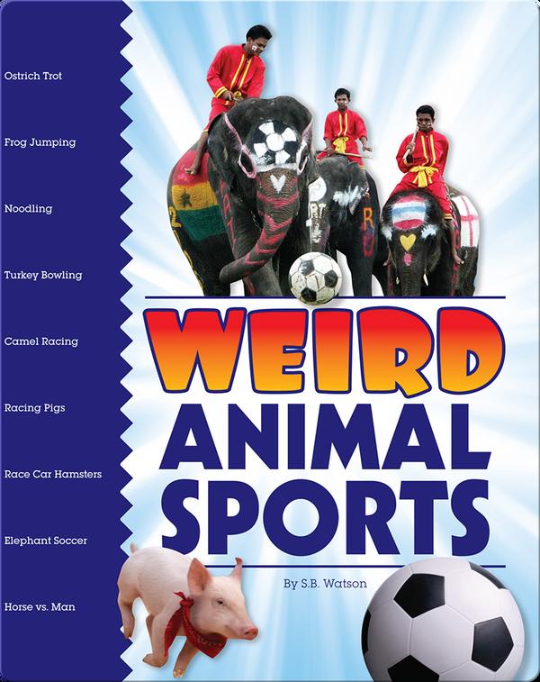 Weird Animal Sports
