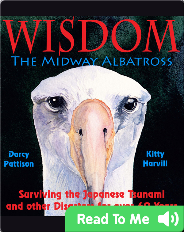 Wisdom, the Midway Albatross