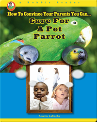 Care for a Pet Parrot