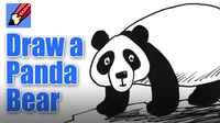 How to Draw a Panda Bear Real Easy