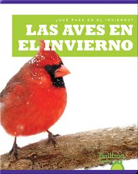 Las Aves en el Invierno (¿Qué Pasa en el Invierno?)