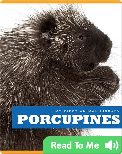 My First Animal Library: Porcupines