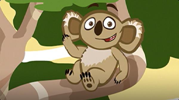 I'm a Koala