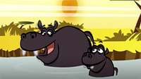 I'm a Hippo