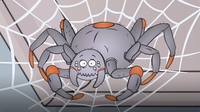 I'm a Spider