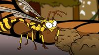 I'm a Mud Wasp
