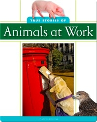 True Stories of Animal at Work