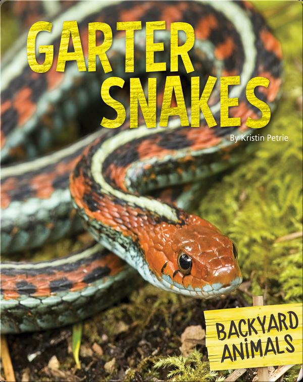 Garter Snakes
