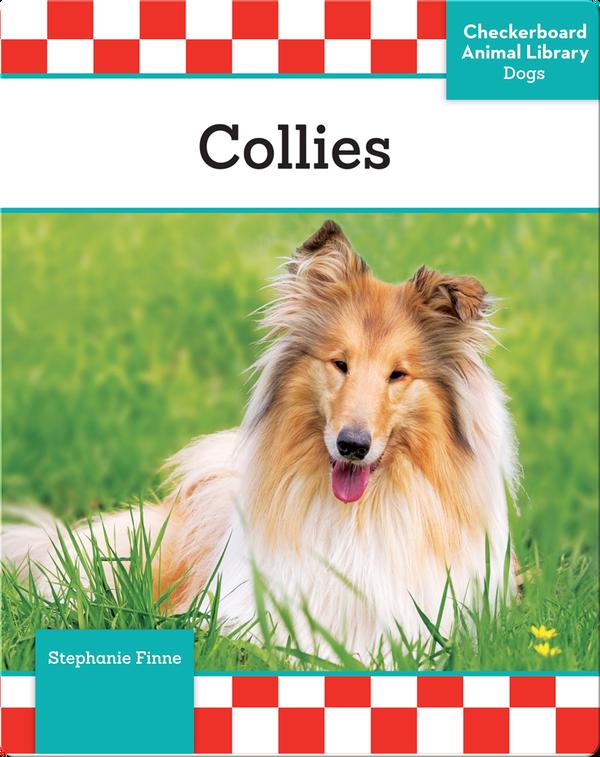 Collies