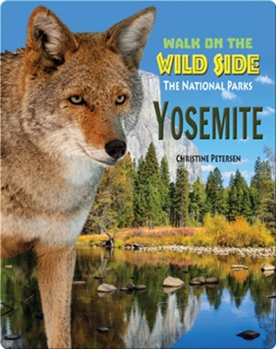 Walk on the Wild Side: Yosemite