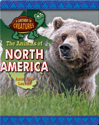 The Animals of North America
