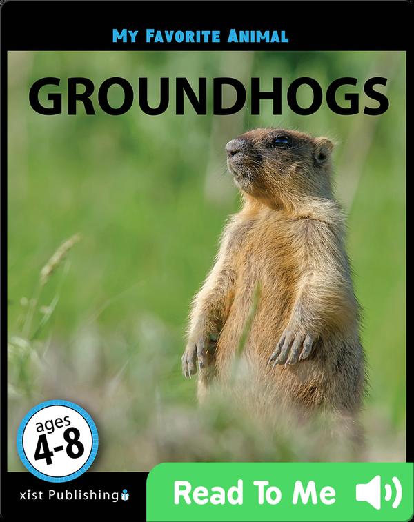 My Favorite Animal: Groundhogs