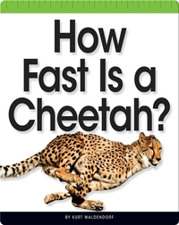 How Fast Is a Cheetah?