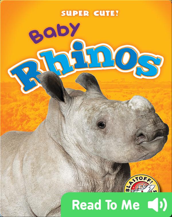 Super Cute! Baby Rhinos