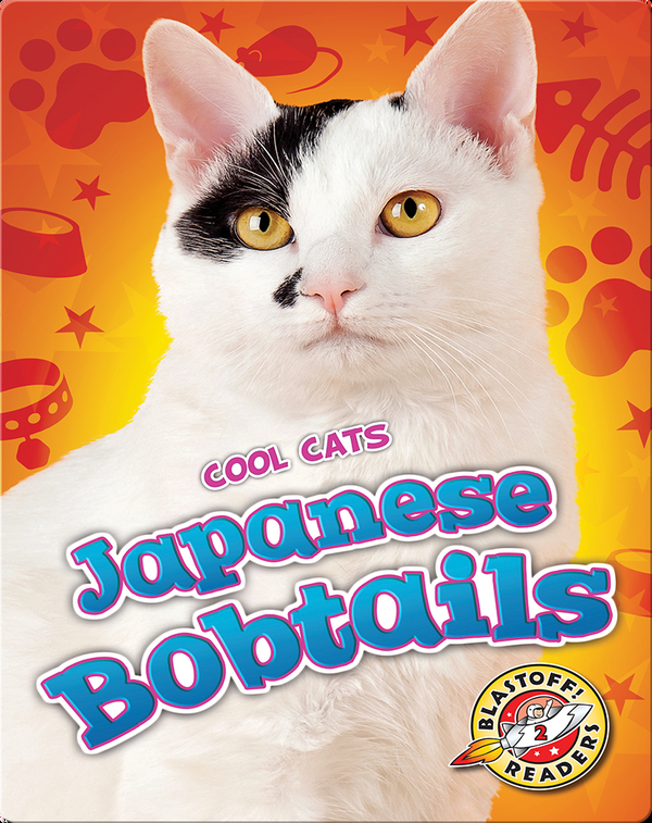 Cool Cats: Japanese Bobtails