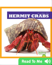 My First Pet: Hermit Crabs