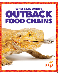 Who Eats What? Outback Food Chain