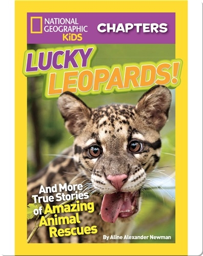 National Geographic Kids Chapters: Lucky Leopards