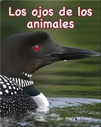 Los ojos de los animales