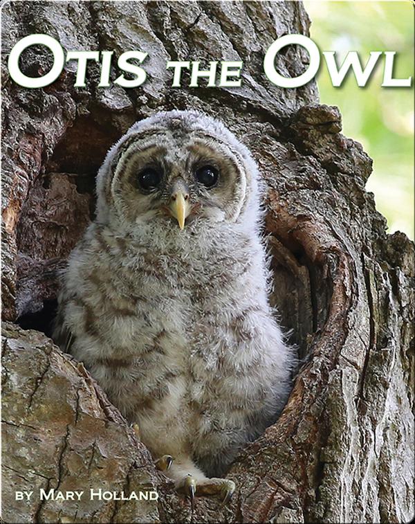 Otis the Owl